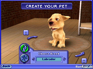 Pets игра скачать торрент